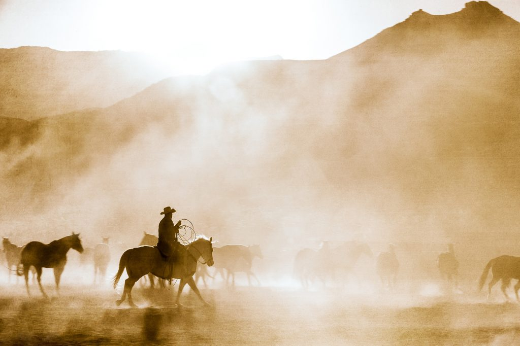 A Modern Cowboy Drives Cattle Near Moab, Utah. The Mist in this Photo Makes this Western Lifestyle Portrait by Tyler Stableford Haunting and Memorable.