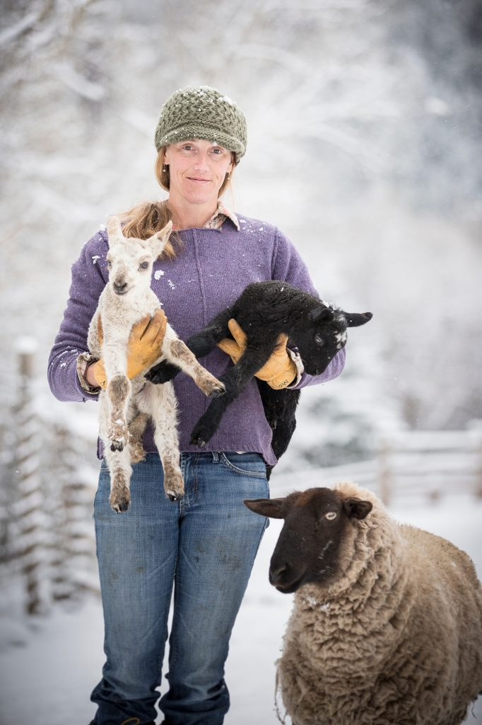 In the Winter in Colorado, a Farmer Carries Lambs Through the Snow. Sustainable Grazing and Herding Allow for Farmers to Connect with their Animals.